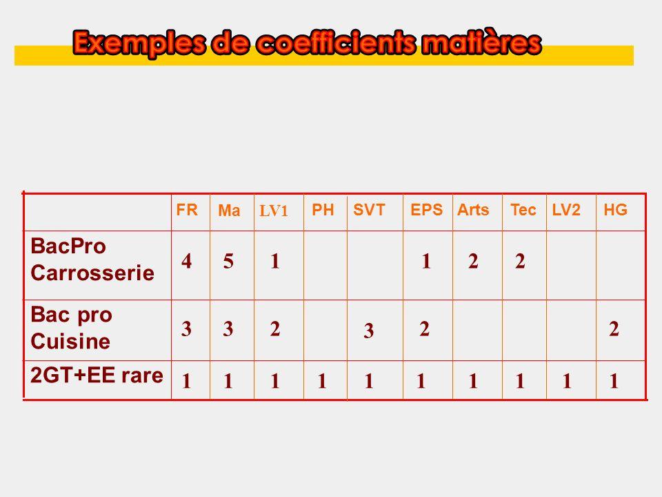 HGLV2EPSSVTPH 2GT+EE rare Bac pro Cuisine BacPro Carrosserie Arts FR Tec Ma LV1 1111111111 1145 323 22 2 3 2