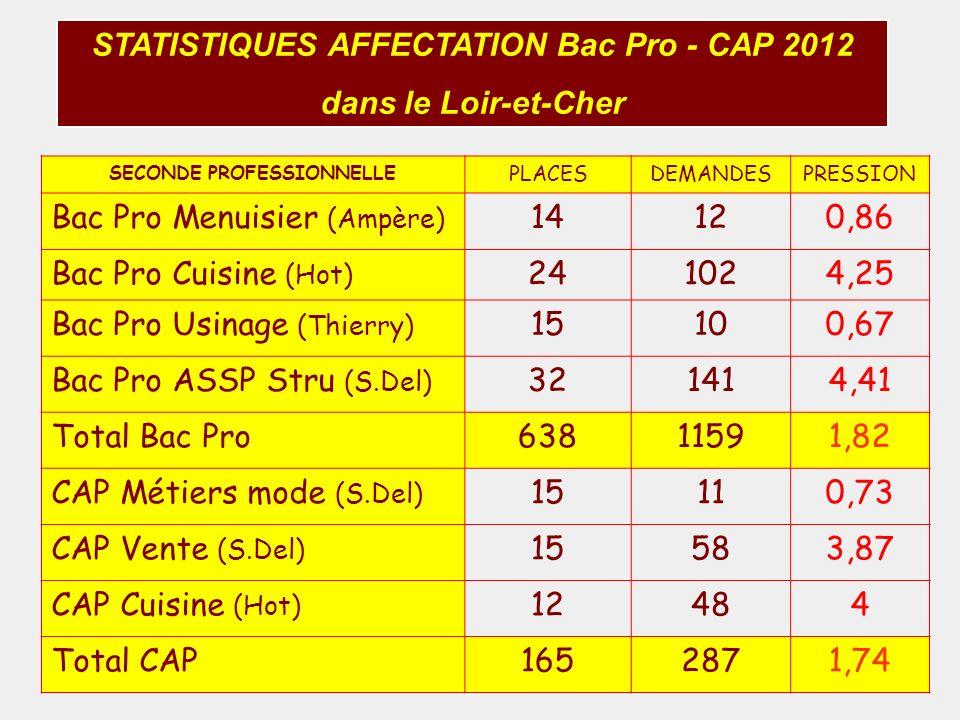 STATISTIQUES AFFECTATION Bac Pro - CAP 2012 dans le Loir-et-Cher SECONDE PROFESSIONNELLE PLACESDEMANDESPRESSION Bac Pro Menuisier (Ampère) 14120,86 Ba