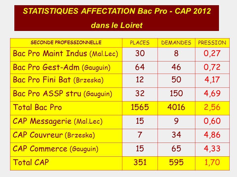 STATISTIQUES AFFECTATION Bac Pro - CAP 2012 dans le Loiret SECONDE PROFESSIONNELLE PLACESDEMANDESPRESSION Bac Pro Maint Indus (Mal.Lec) 3080,27 Bac Pr