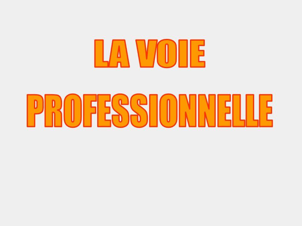STATISTIQUES AFFECTATION Bac Pro - CAP 2012 dans le Loiret SECONDE PROFESSIONNELLE PLACESDEMANDESPRESSION Bac Pro Maint Indus (Mal.Lec) 3080,27 Bac Pro Gest-Adm (Gauguin) 64460,72 Bac Pro Fini Bat (Brzeska) 12504,17 Bac Pro ASSP stru (Gauguin) 321504,69 Total Bac Pro156540162,56 CAP Messagerie (Mal.Lec) 1590,60 CAP Couvreur (Brzeska) 7344,86 CAP Commerce (Gauguin) 15654,33 Total CAP3515951,70