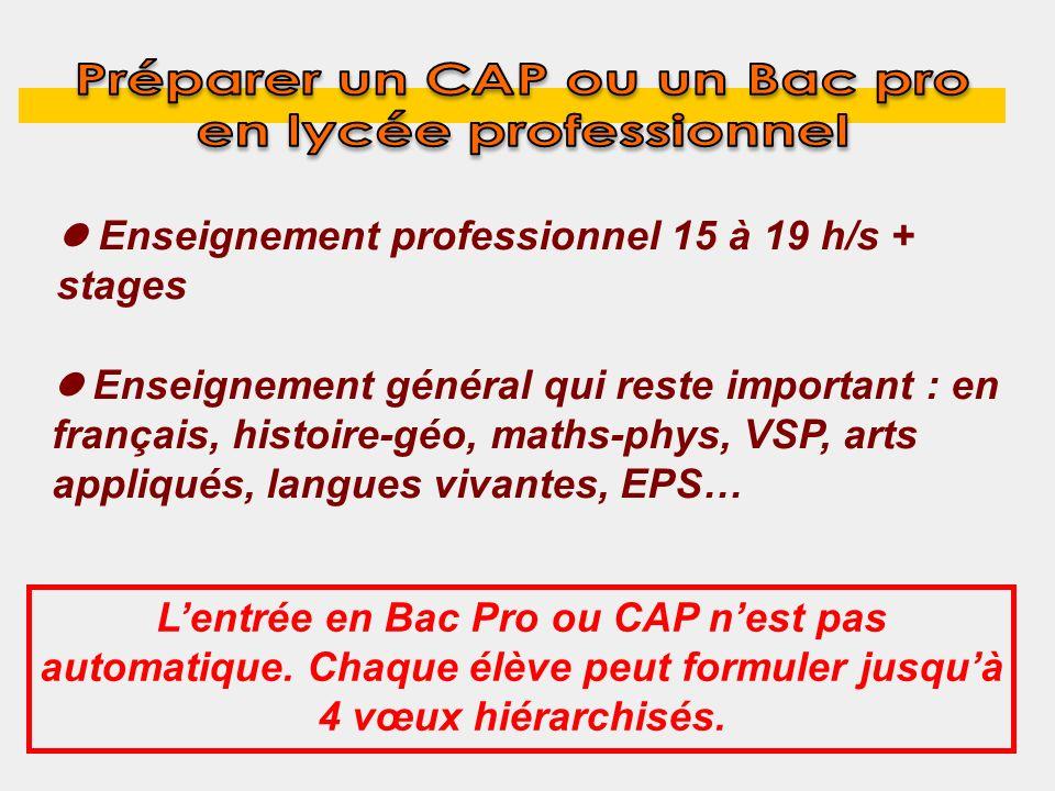 Enseignement professionnel 15 à 19 h/s + stages Enseignement général qui reste important : en français, histoire-géo, maths-phys, VSP, arts appliqués,