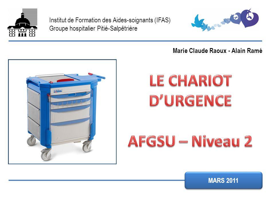 Institut de Formation des Aides-soignants (IFAS) Groupe hospitalier Pitié-Salpêtrière MARS 2011 Marie Claude Raoux - Alain Ramé