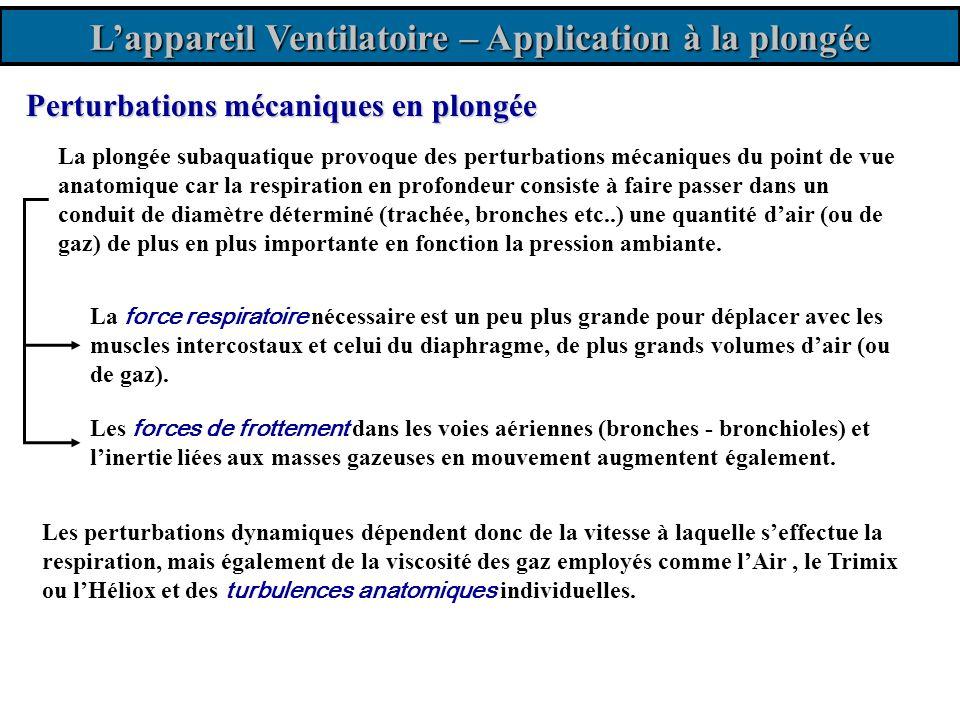 Lappareil Ventilatoire – Application à la plongée Les perturbations dynamiques dépendent donc de la vitesse à laquelle seffectue la respiration, mais