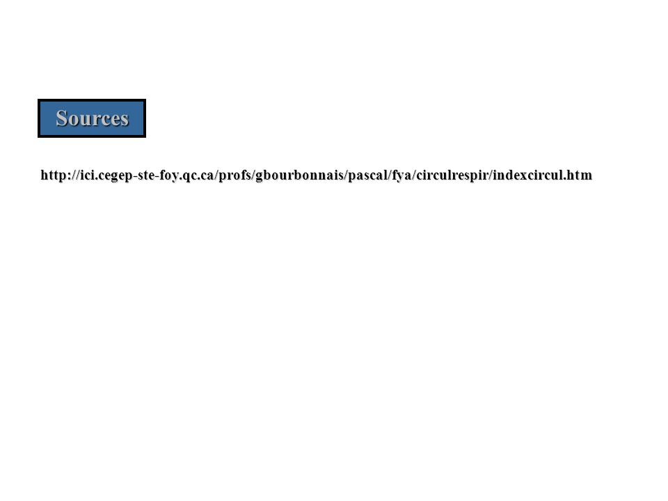 http://ici.cegep-ste-foy.qc.ca/profs/gbourbonnais/pascal/fya/circulrespir/indexcircul.htm Sources