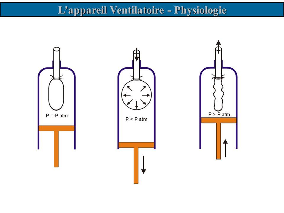 La mécanique ventilatoire Lexpiration Phénomène passif.