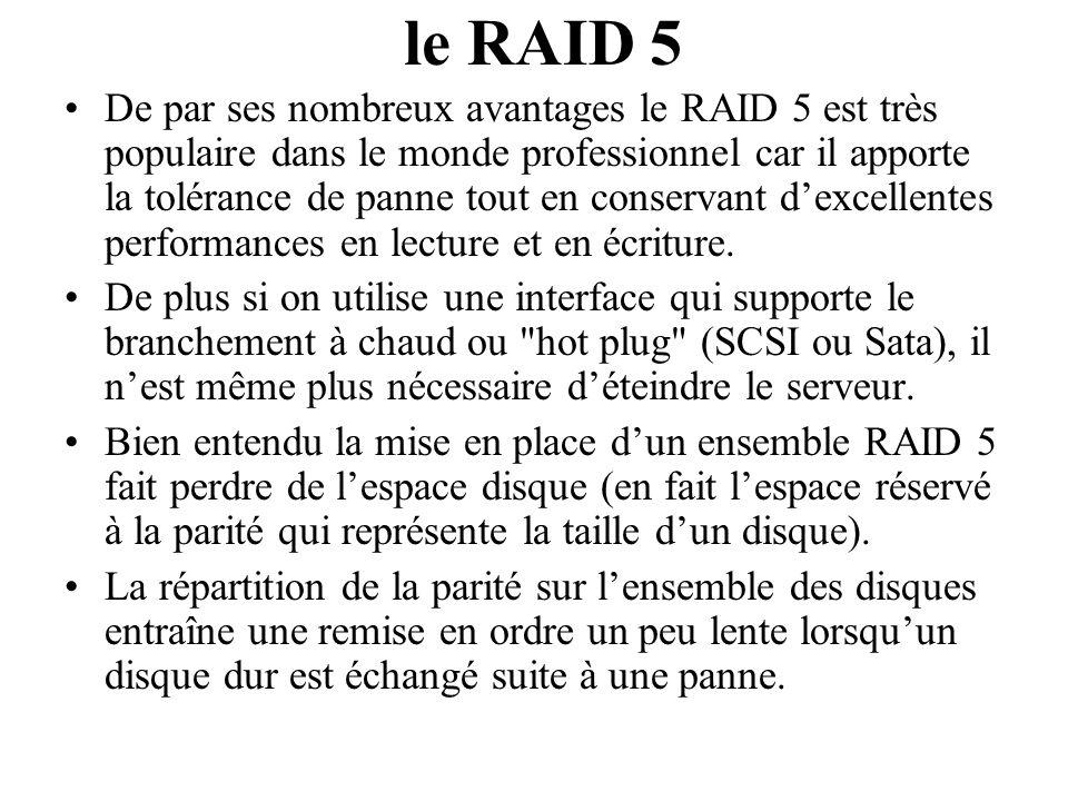 De par ses nombreux avantages le RAID 5 est très populaire dans le monde professionnel car il apporte la tolérance de panne tout en conservant dexcell