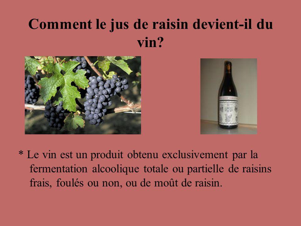 Comment le jus de raisin devient-il du vin? * Le vin est un produit obtenu exclusivement par la fermentation alcoolique totale ou partielle de raisins