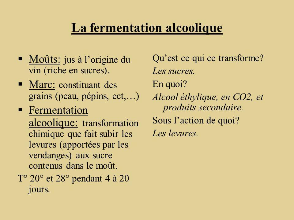 La fermentation alcoolique Moûts: jus à lorigine du vin (riche en sucres). Marc: constituant des grains (peau, pépins, ect,…) Fermentation alcoolique:
