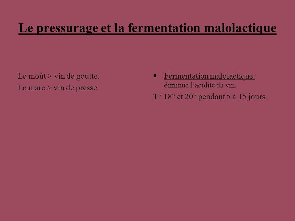 Le pressurage et la fermentation malolactique Le moût > vin de goutte. Le marc > vin de presse. Fermentation malolactique: diminue lacidité du vin. T°