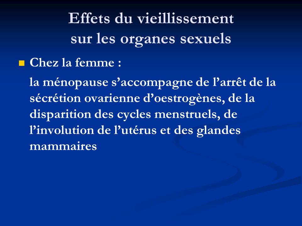 Effets du vieillissement sur les organes sexuels Chez la femme : la ménopause saccompagne de larrêt de la sécrétion ovarienne doestrogènes, de la disp