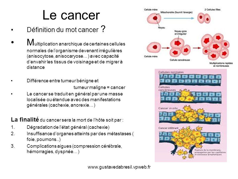 www.gustavedabresil.vpweb.fr Le cancer Définition du mot cancer ? M ultiplication anarchique de certaines cellules normales de lorganisme devenant irr