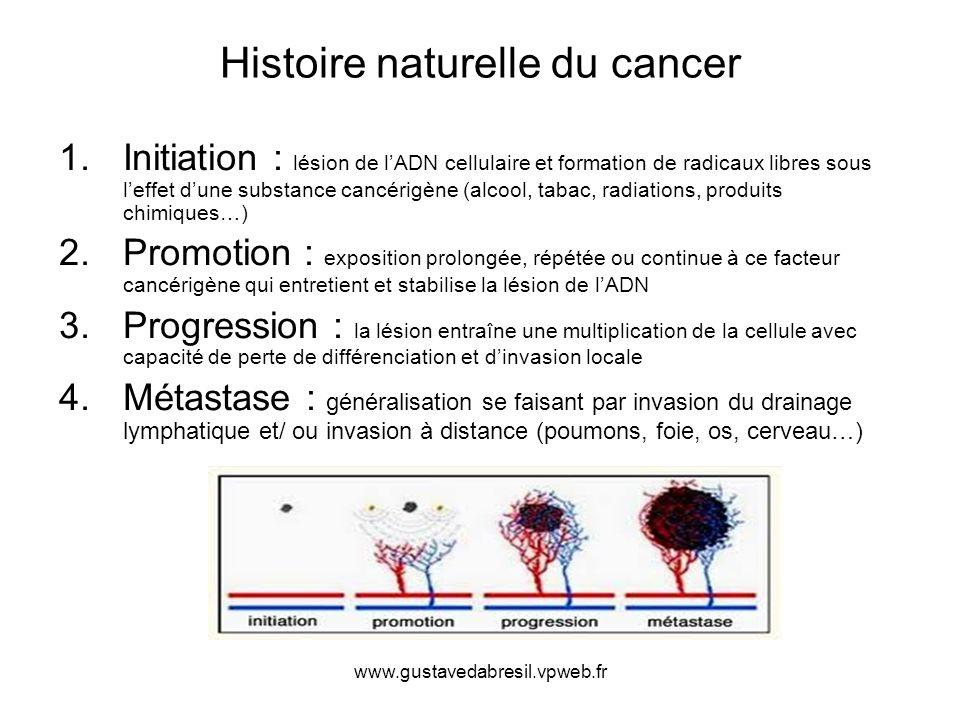 www.gustavedabresil.vpweb.fr Histoire naturelle du cancer 1.Initiation : lésion de lADN cellulaire et formation de radicaux libres sous leffet dune su