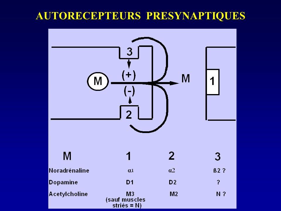 AUTORECEPTEURS PRESYNAPTIQUES