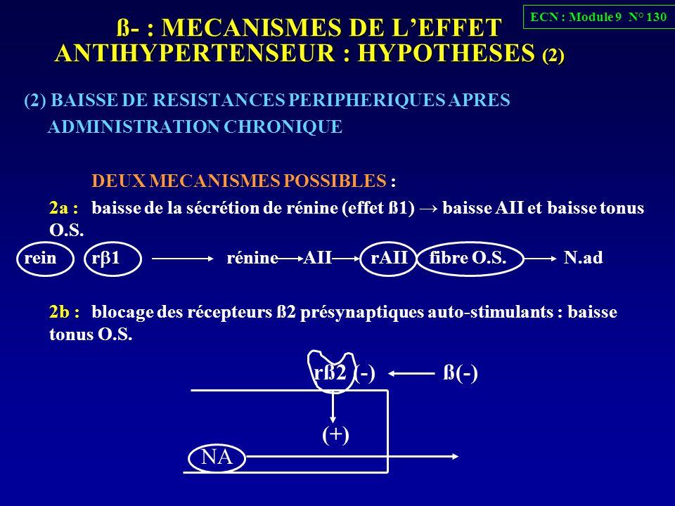 ß- : MECANISMES DE LEFFET ANTIHYPERTENSEUR : HYPOTHESES (2) (2) BAISSE DE RESISTANCES PERIPHERIQUES APRES ADMINISTRATION CHRONIQUE DEUX MECANISMES POS