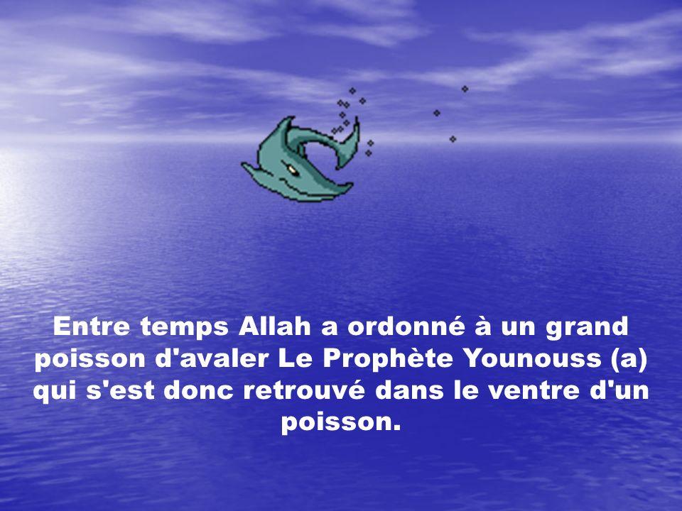 Entre temps Allah a ordonné à un grand poisson d'avaler Le Prophète Younouss (a) qui s'est donc retrouvé dans le ventre d'un poisson.
