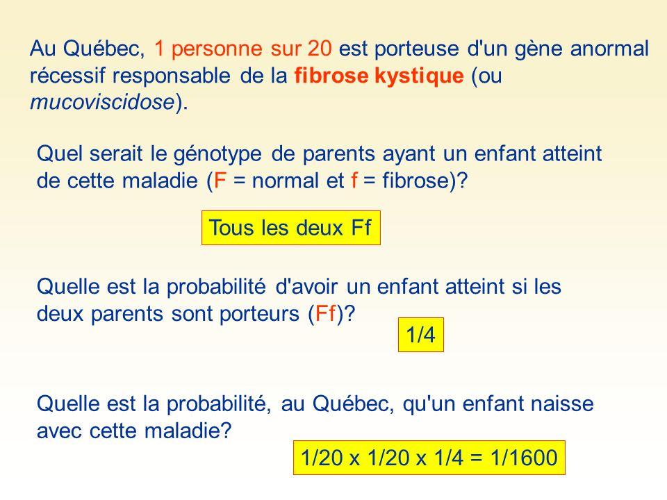 Au Québec, 1 personne sur 20 est porteuse d'un gène anormal récessif responsable de la fibrose kystique (ou mucoviscidose). Quel serait le génotype de