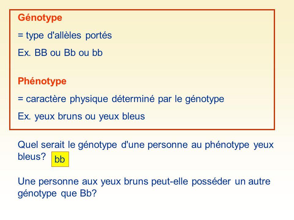 Génotype = type d'allèles portés Ex. BB ou Bb ou bb Phénotype = caractère physique déterminé par le génotype Ex. yeux bruns ou yeux bleus Quel serait