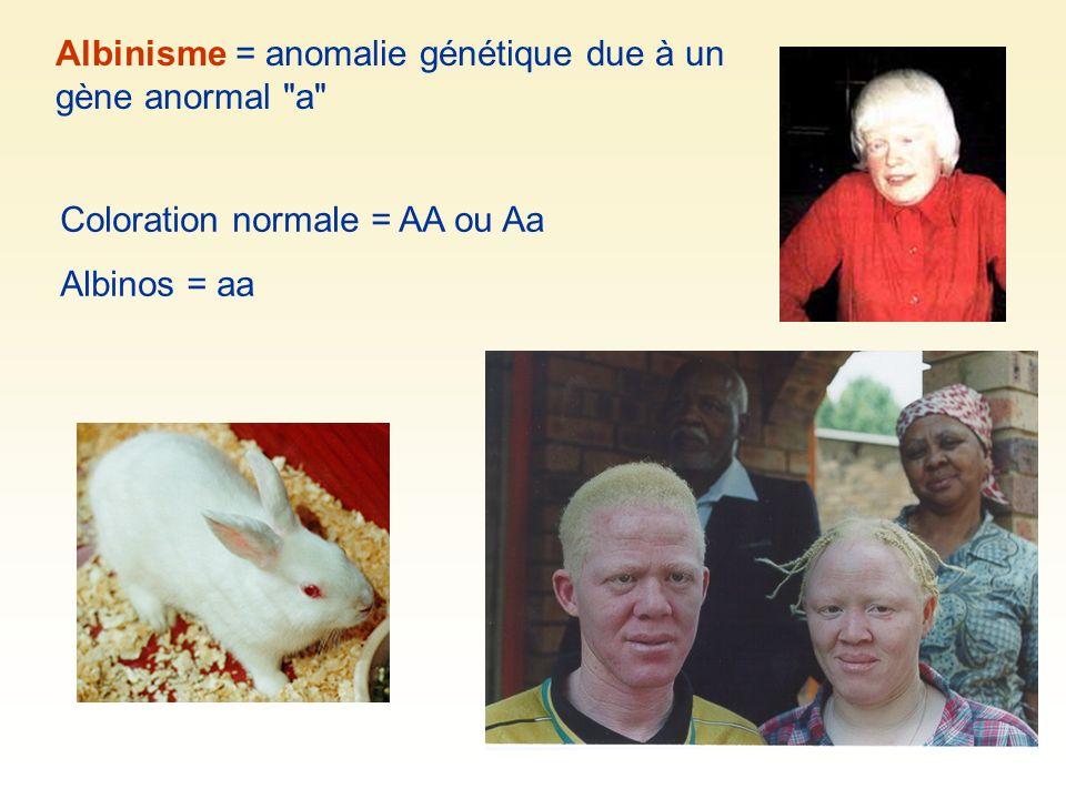 Albinisme = anomalie génétique due à un gène anormal