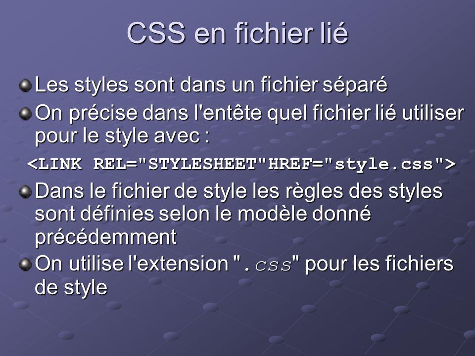 CSS en fichier lié Les styles sont dans un fichier séparé On précise dans l'entête quel fichier lié utiliser pour le style avec : Dans le fichier de s