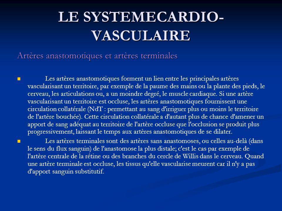 Artères anastomotiques et artères terminales Les artères anastomotiques forment un lien entre les principales artères vascularisant un territoire, par