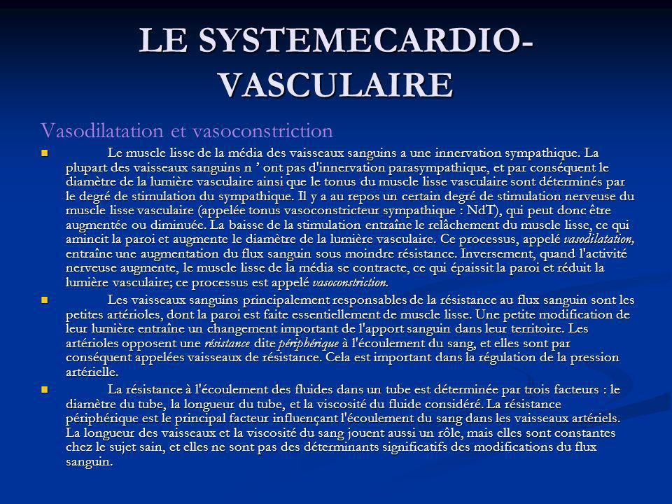 Vasodilatation et vasoconstriction Le muscle lisse de la média des vaisseaux sanguins a une innervation sympathique. La plupart des vaisseaux sanguins