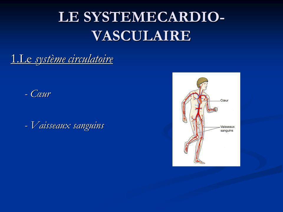 LE SYSTEMECARDIO- VASCULAIRE 1.Le système circulatoire - Cœur - Cœur - Vaisseaux sanguins - Vaisseaux sanguins