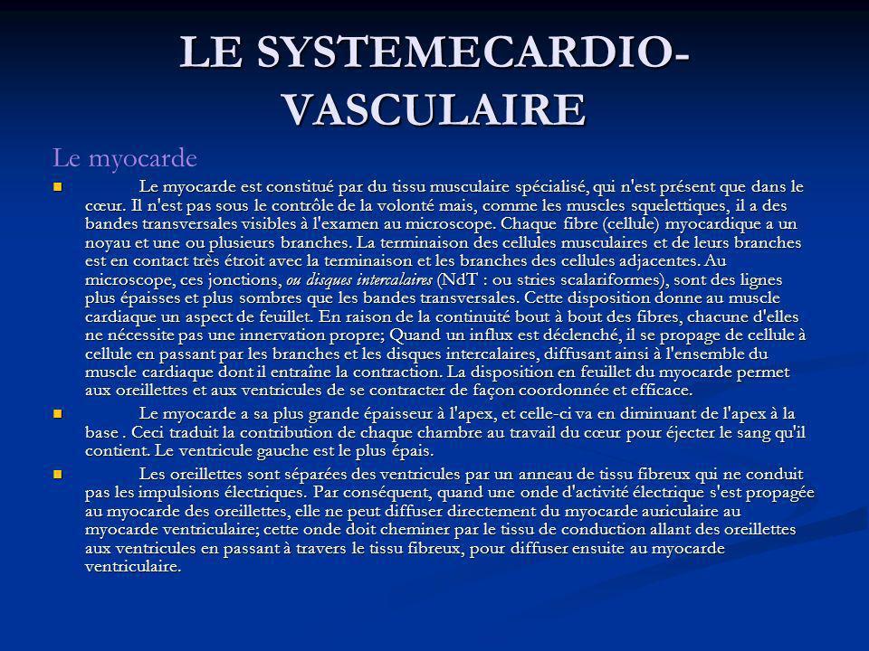 LE SYSTEMECARDIO- VASCULAIRE Le myocarde Le myocarde est constitué par du tissu musculaire spécialisé, qui n'est présent que dans le cœur. Il n'est pa