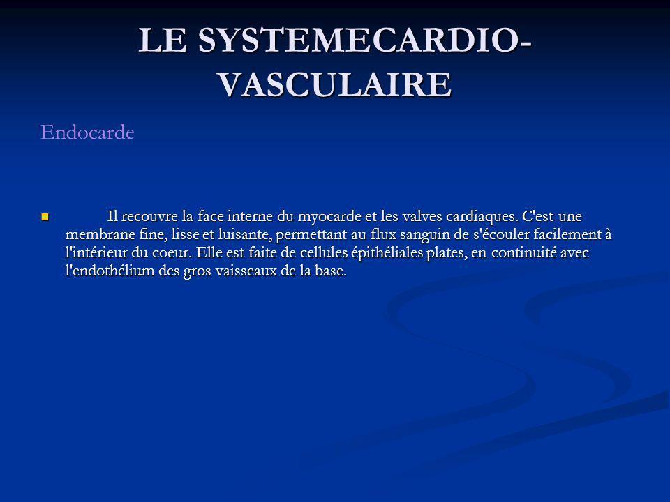 LE SYSTEMECARDIO- VASCULAIRE Endocarde Il recouvre la face interne du myocarde et les valves cardiaques. C'est une membrane fine, lisse et luisante, p