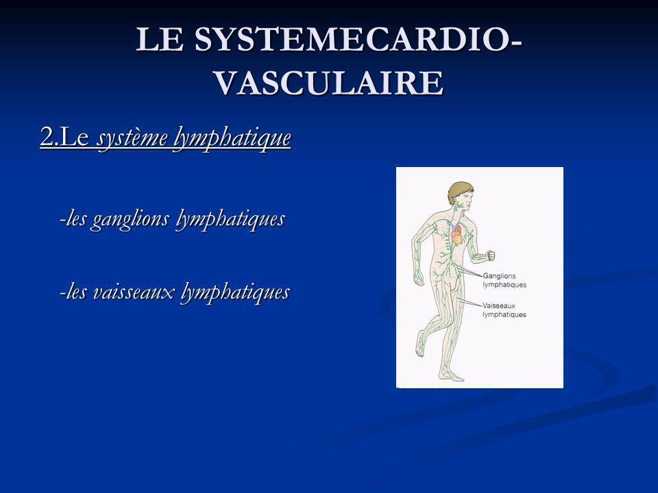 LE SYSTEMECARDIO- VASCULAIRE 2.Le système lymphatique -les ganglions lymphatiques -les ganglions lymphatiques -les vaisseaux lymphatiques -les vaissea