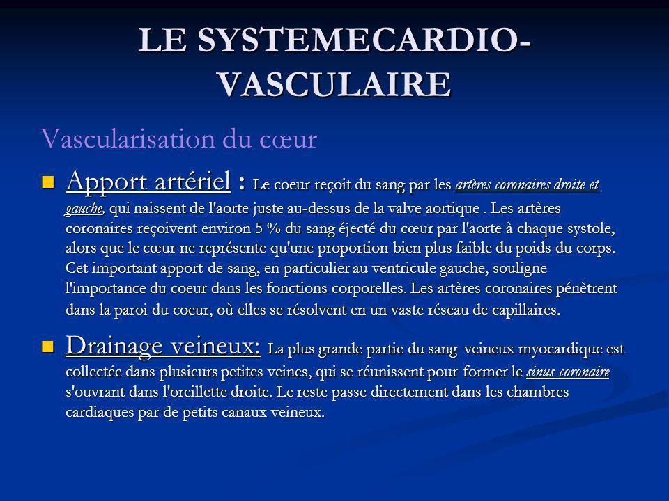 Vascularisation du cœur Apport artériel : Le coeur reçoit du sang par les artères coronaires droite et gauche, qui naissent de l'aorte juste au-dessus