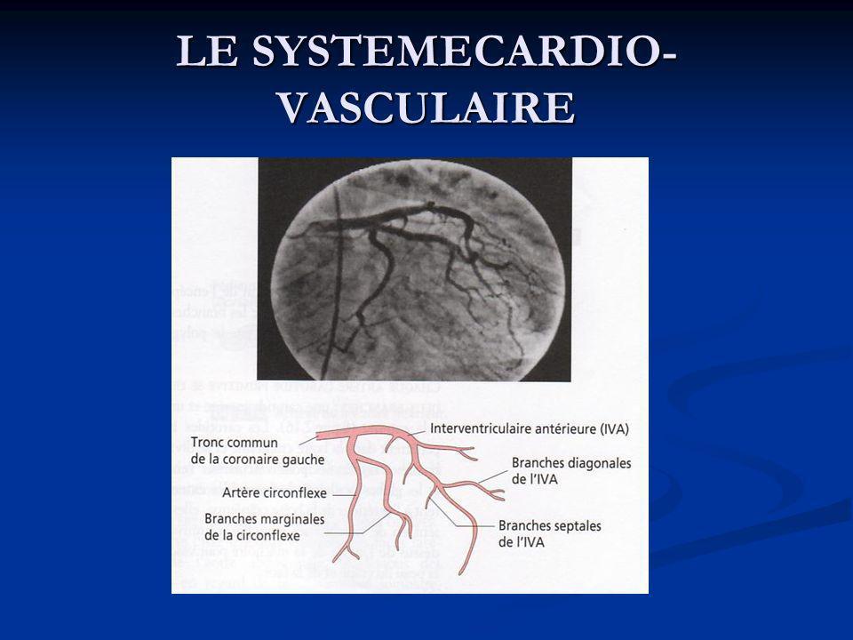 Système de conduction du cœur Le myocarde contient de petits groupes de cellules neuromusculaires spécialisées, qui initient et conduisent les impulsions responsables des contractions coordonnées et synchronisées du muscle cardiaque (NdT : ces cellules constituent le « tissu de conduction myocardique » ou « tissu nodal »); ce tissu est doué d automatisme, car il est capable de générer spontanément et régulièrement des influx nerveux.