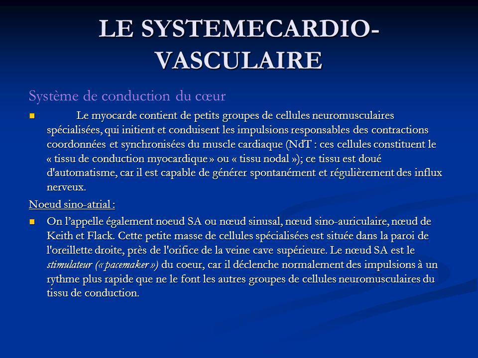 Système de conduction du cœur Le myocarde contient de petits groupes de cellules neuromusculaires spécialisées, qui initient et conduisent les impulsi