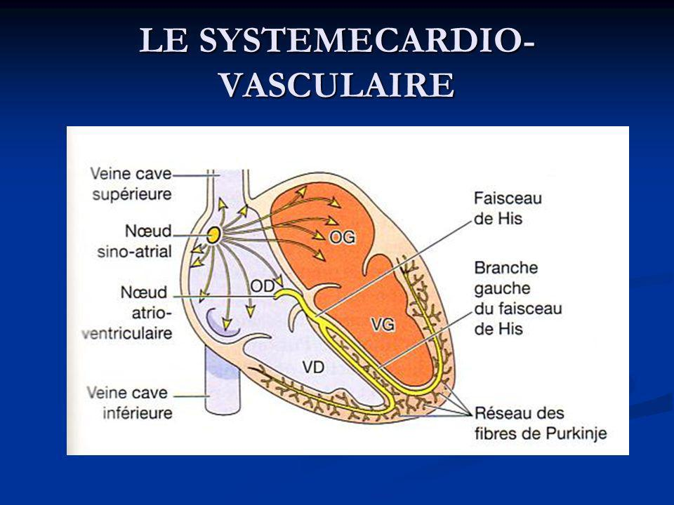 LE SYSTEMECARDIO- VASCULAIRE
