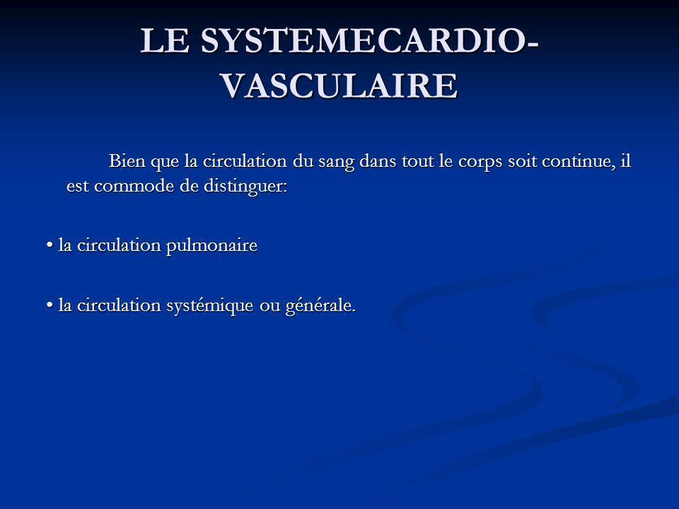 LE SYSTEMECARDIO- VASCULAIRE Bien que la circulation du sang dans tout le corps soit continue, il est commode de distinguer: la circulation pulmonaire
