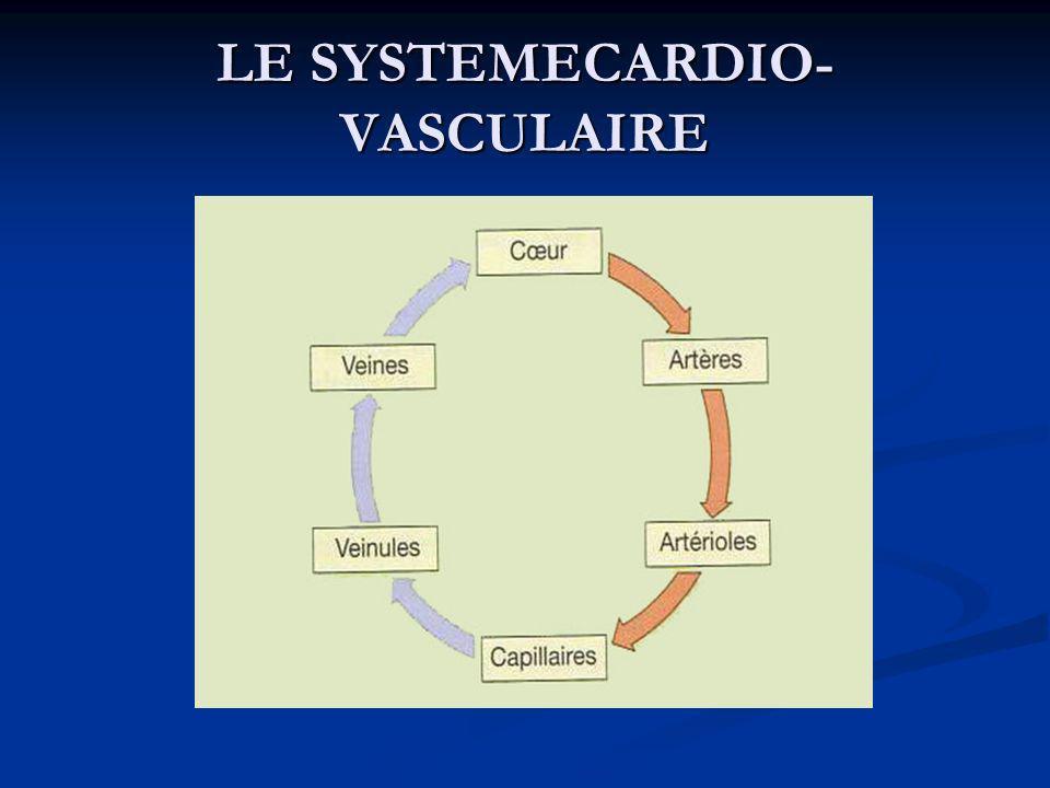 VAISSEAUX SANGUINS VAISSEAUX SANGUINS Résultats attendus de l étude Après avoir étudié ce paragraphe, vous devriez être capable : de décrire les structures et les fonctions des artères, des veines et des capillaires, dannoter les schémas de la circulation générale, d expliquer les relations entre les différents types de vaisseaux sanguins, d indiquer les principaux facteurs contrôlant le diamètre des vaisseaux sanguins, d expliquer les mécanismes des échanges de nutriments, de gaz et de déchets entre le sang et les tissus.