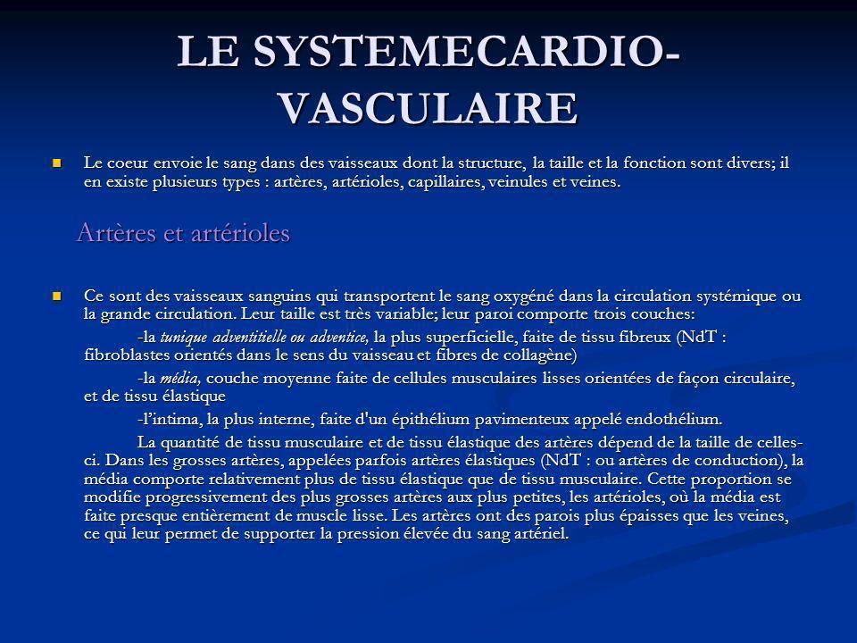 LE SYSTEMECARDIO- VASCULAIRE Le coeur envoie le sang dans des vaisseaux dont la structure, la taille et la fonction sont divers; il en existe plusieur