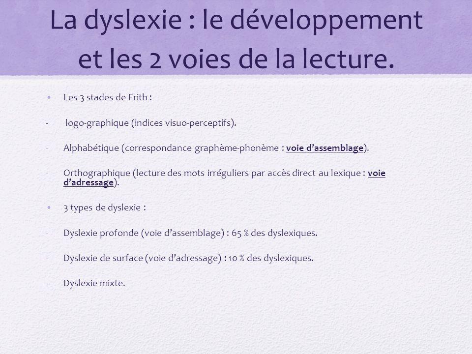 La dyslexie : le développement et les 2 voies de la lecture. Les 3 stades de Frith : - logo-graphique (indices visuo-perceptifs). -Alphabétique (corre