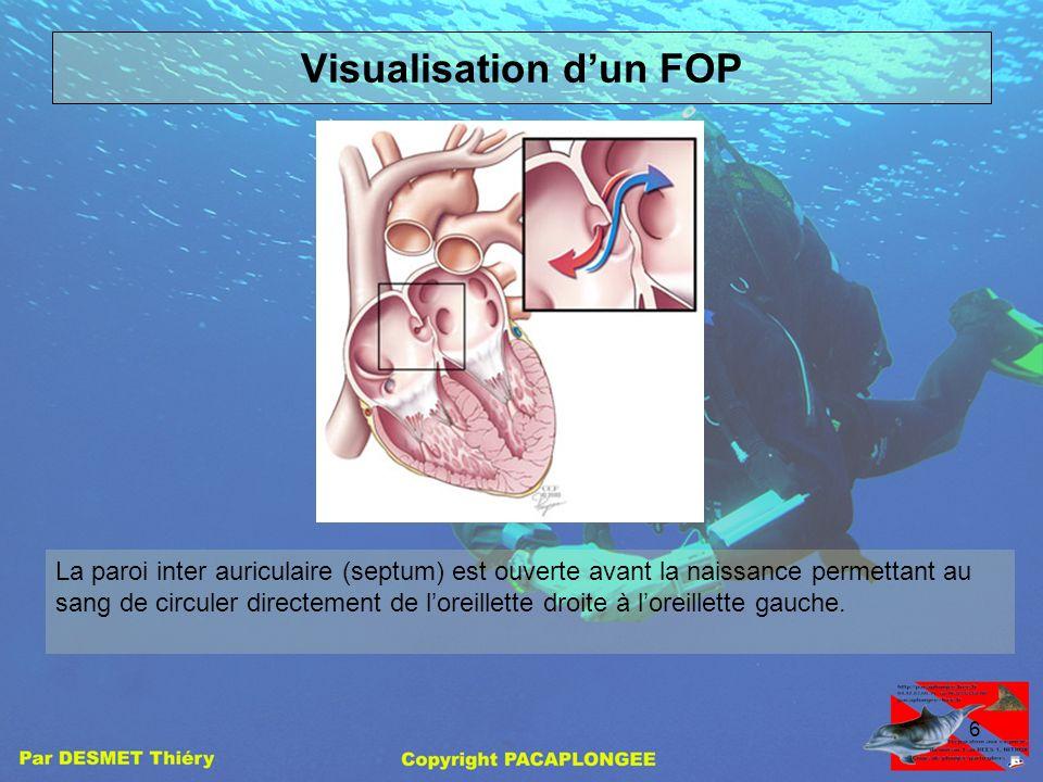 5 2 ) Communication du cœur gauche et du cœur droit Comme nous lavons vu précédemment, les échanges gazeux ne se font pas au niveau pulmonaire. La cir