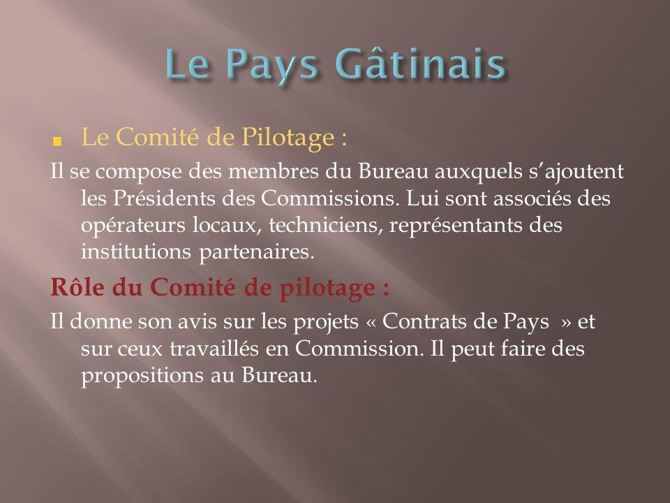 Le Comité de Pilotage : Il se compose des membres du Bureau auxquels sajoutent les Présidents des Commissions.