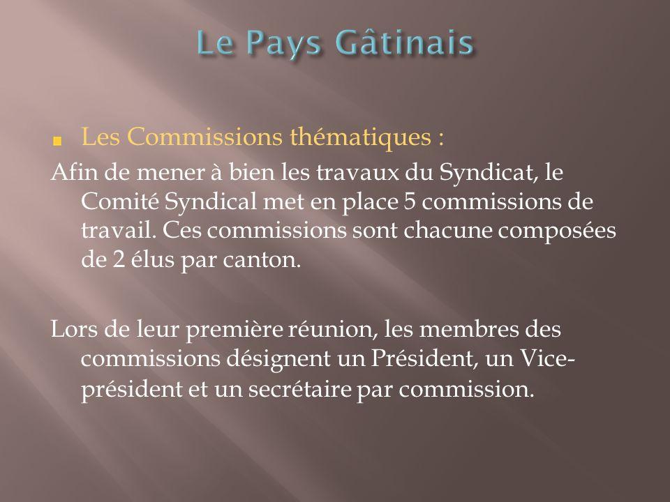 Les Commissions thématiques : Afin de mener à bien les travaux du Syndicat, le Comité Syndical met en place 5 commissions de travail.