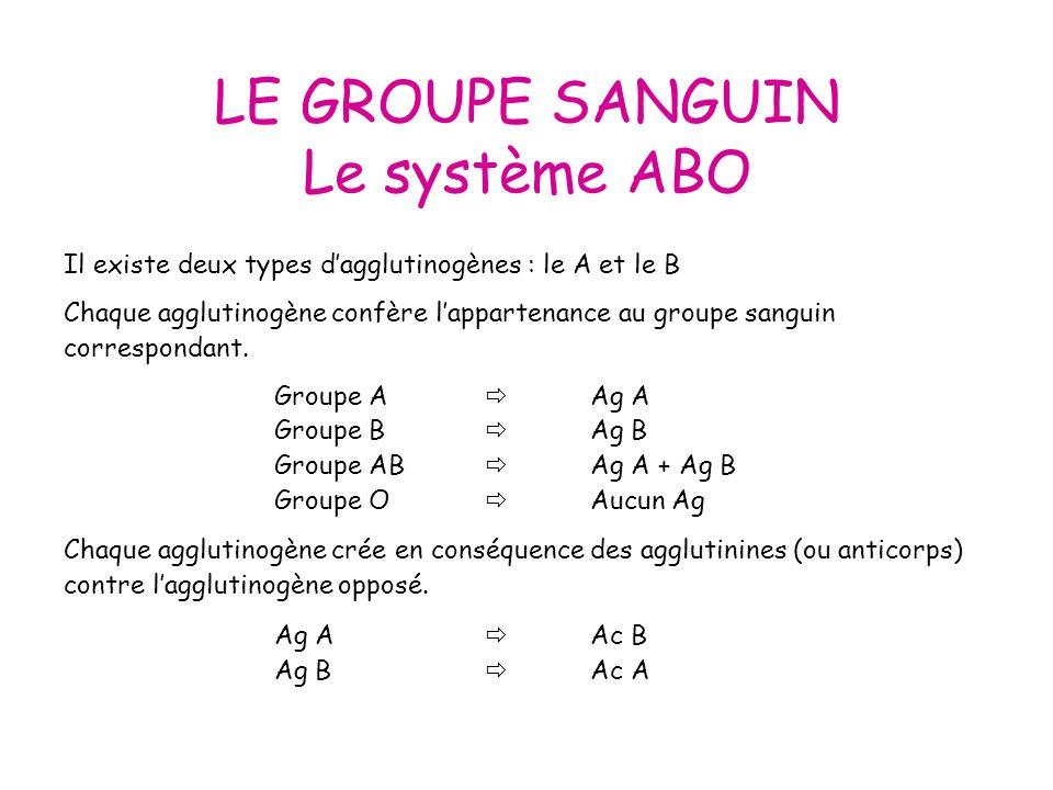 LE GROUPE SANGUIN Le système ABO GroupeABABO AntigèneAgAAgBAgA + AgB AnticorpsAcBAcAAcA + AcB Ce qui signifierait quun individu de groupe A possède des Ac contre le sang de groupe B et vice et versa.