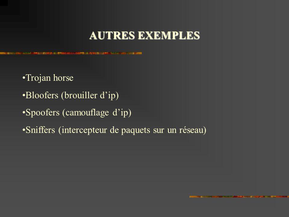 AUTRES EXEMPLES Trojan horse Bloofers (brouiller dip) Spoofers (camouflage dip) Sniffers (intercepteur de paquets sur un réseau)