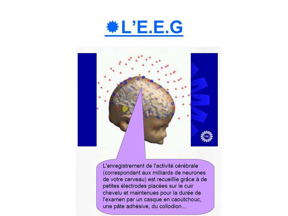 LE.E.G