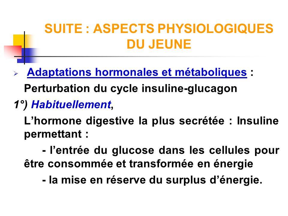 SUITE : ASPECTS PHYSIOLOGIQUES DU JEUNE Adaptations hormonales et métaboliques : Perturbation du cycle insuline-glucagon 1°) Habituellement, Lhormone