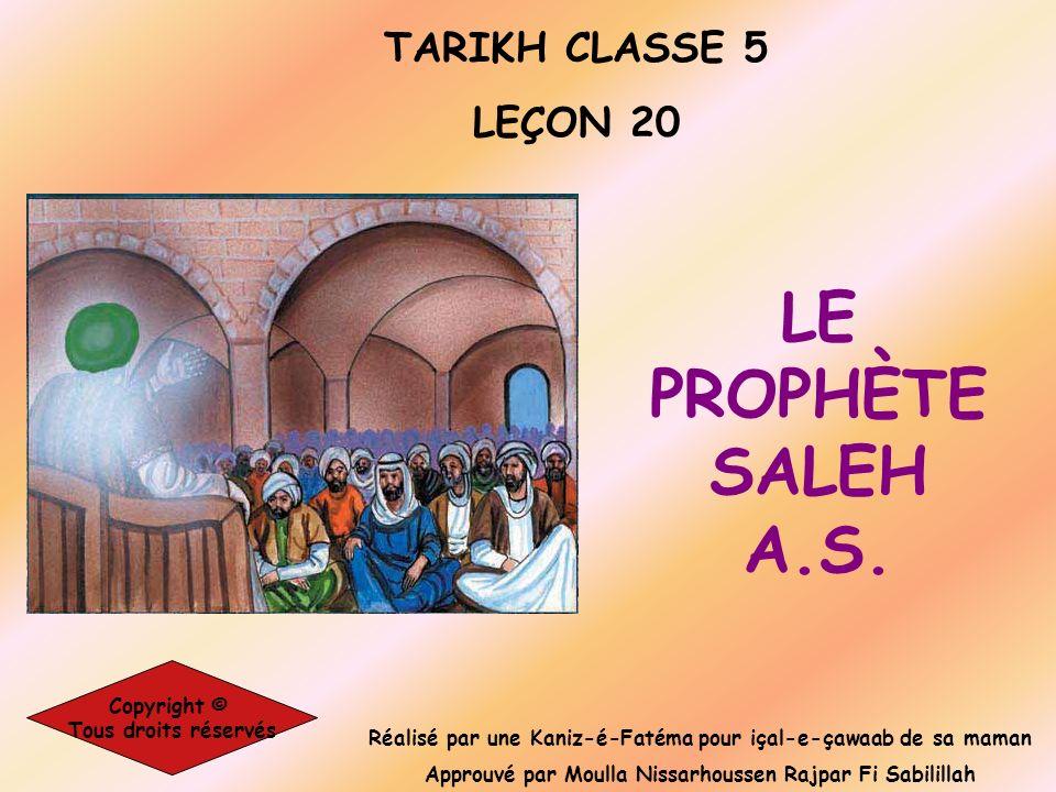 Réalisé par une Kaniz-é-Fatéma pour içal-e-çawaab de sa maman Approuvé par Moulla Nissarhoussen Rajpar Fi Sabilillah TARIKH CLASSE 5 LEÇON 20 Copyrigh
