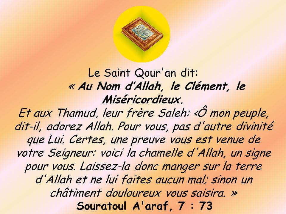 Le Saint Qour'an dit: « Au Nom dAllah, le Clément, le Miséricordieux. Et aux Thamud, leur frère Saleh: Ô mon peuple, dit-il, adorez Allah. Pour vous,