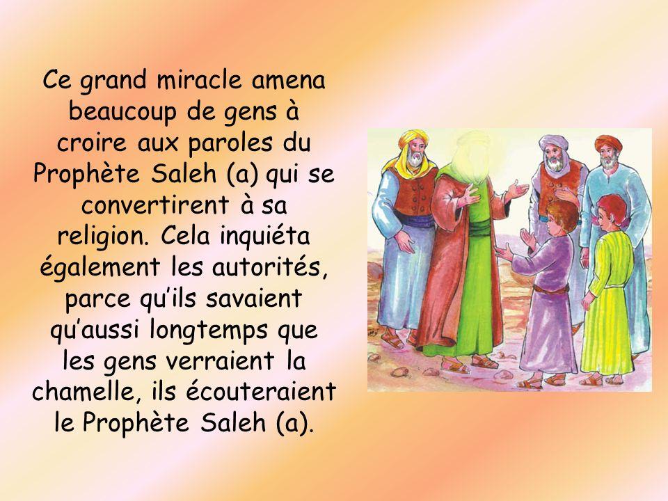Ce grand miracle amena beaucoup de gens à croire aux paroles du Prophète Saleh (a) qui se convertirent à sa religion. Cela inquiéta également les auto