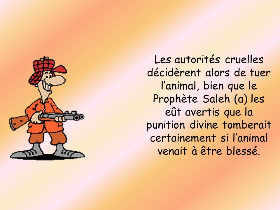 Les autorités cruelles décidèrent alors de tuer lanimal, bien que le Prophète Saleh (a) les eût avertis que la punition divine tomberait certainement