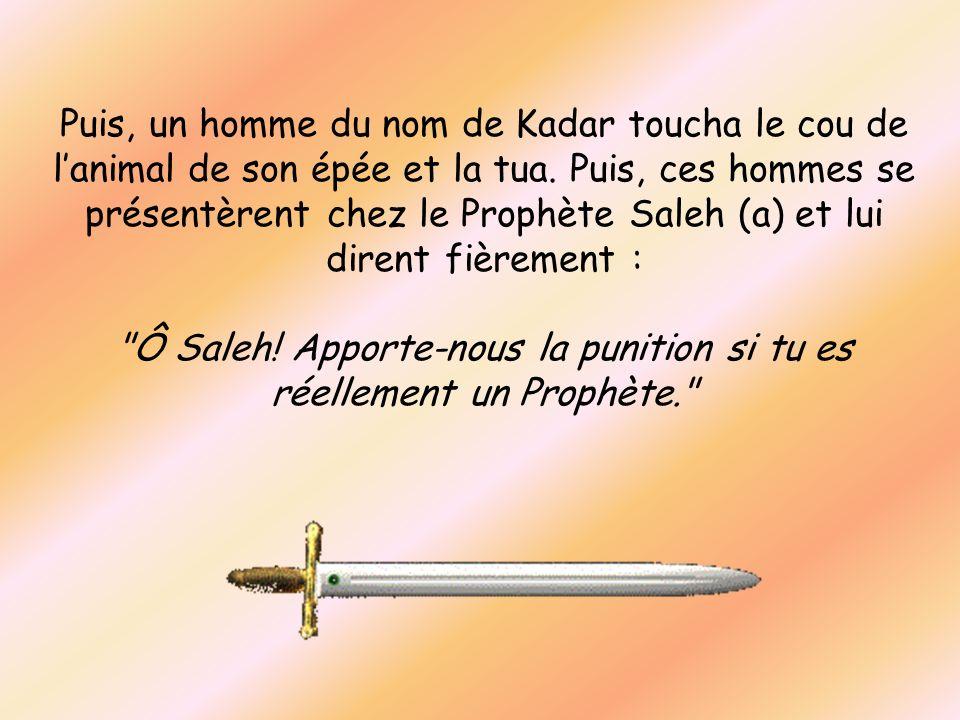 Puis, un homme du nom de Kadar toucha le cou de lanimal de son épée et la tua. Puis, ces hommes se présentèrent chez le Prophète Saleh (a) et lui dire