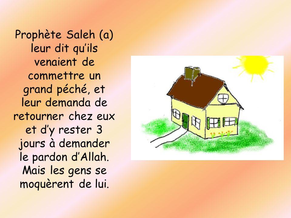 Prophète Saleh (a) leur dit quils venaient de commettre un grand péché, et leur demanda de retourner chez eux et dy rester 3 jours à demander le pardo